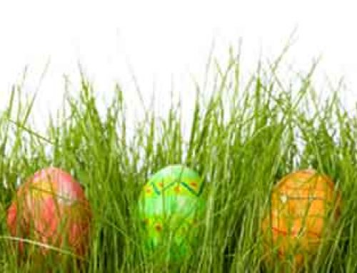 Easter Opening Hours at CLM